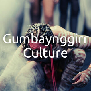 Aboriginal Gumbaynggirr Culture in the Bellingen Shire & the Coffs Coast NSW